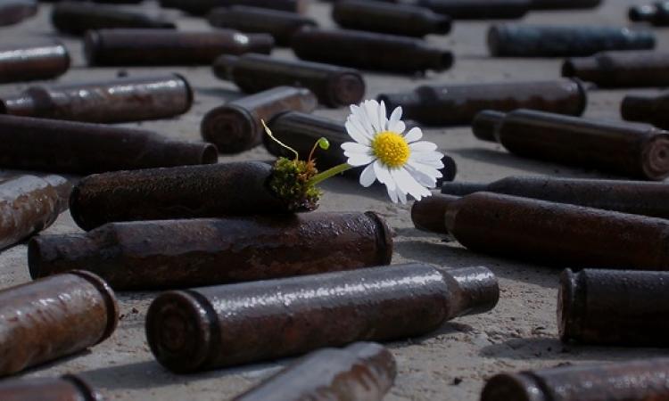 بالصور .. نباتات تشق طريقها عبر الحياة  ولا تعرف المستحيل !!