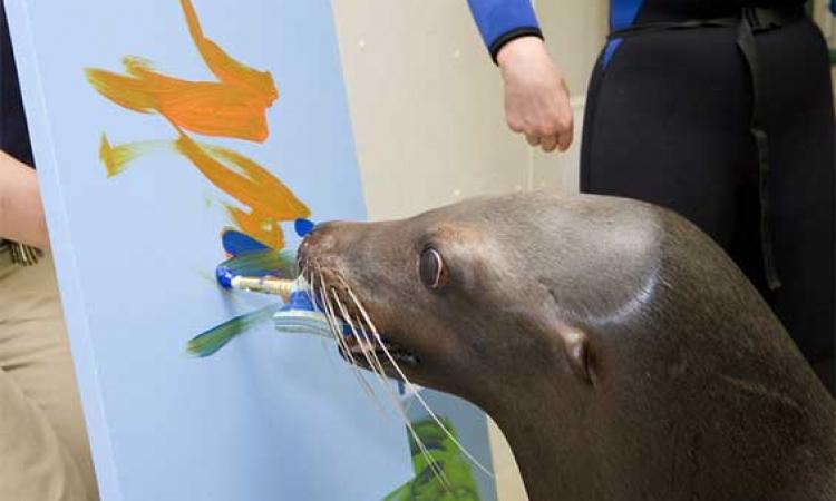 بالصور .. لوحات مدهشة وبديعة .. رسمتها الحيوانات !!