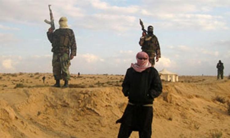 مصدر عسكري : اطلاق سراح عمال العريش بعد استيلاء المسلحين على سيارتهم
