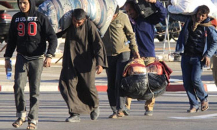 دراسة للأمم المتحدة تتوقع عودة 250 ألف مصري من العاملين في ليبيا
