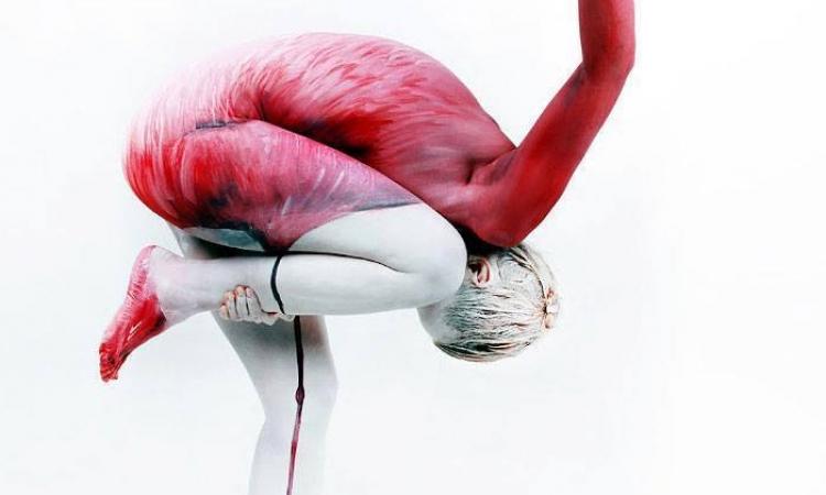 بالصور .. فن تشكيل الحيوانات بجسم إلانسان