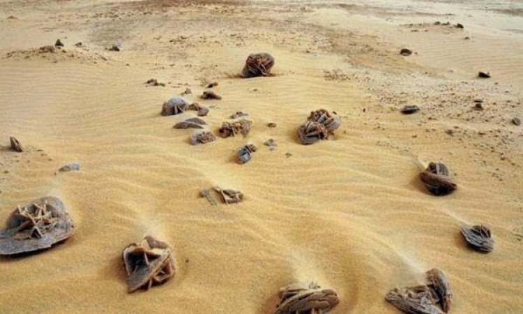 بالصور .. شاهد سحر وجمال .. صحراء الربع الخالي