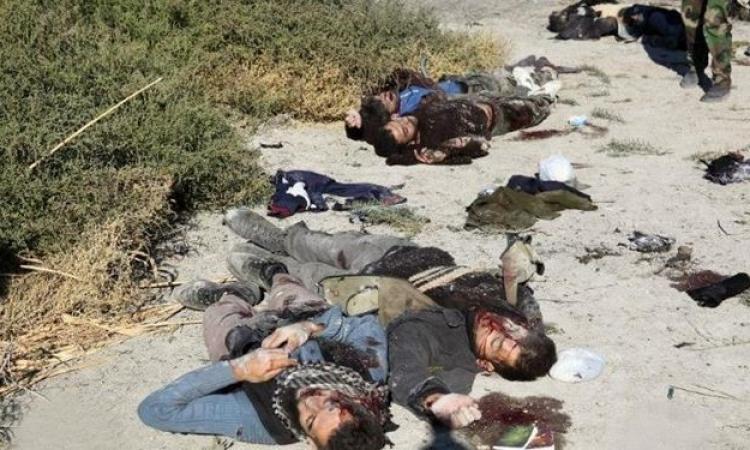 الأمن العراقي يقتل 93 عنصرا من داعش