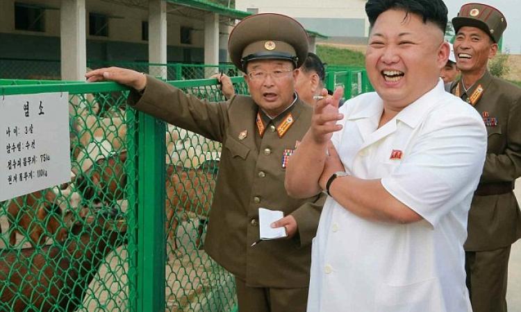 بالصور.. جنرال كوريا الشمالية يزور «معيز الجيش»