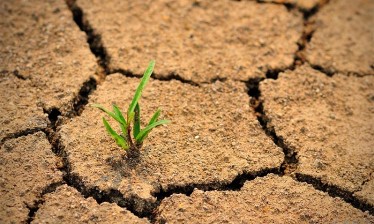 عقد من الجفاف قد يسيطر على أمريكا
