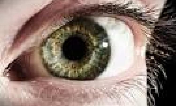 تعرف على سر النقاط السابحة التي تظهر أمام العين