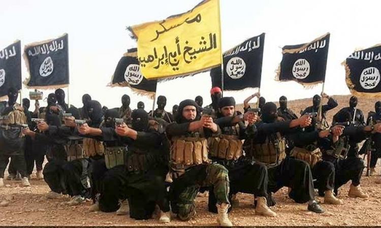 بالفيديو .. عناصر داعش يمزقون جوازات سفرهم وبينهم مصري