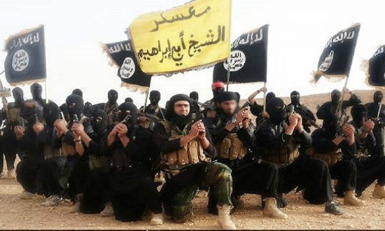 سكاى نيوز: جوازات سفر مقاتلين من داعش تحمل أختام تركية
