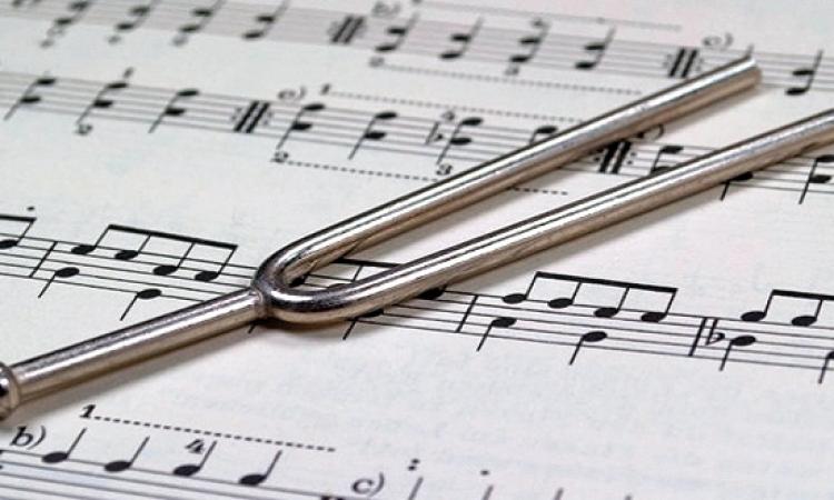موسيقار هولندى يؤلف مقطوعة موسيقية خاصة للصم