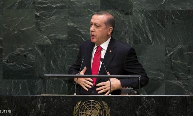 مصر: الشعب التركي وحده القادر على تقويم أردوغان