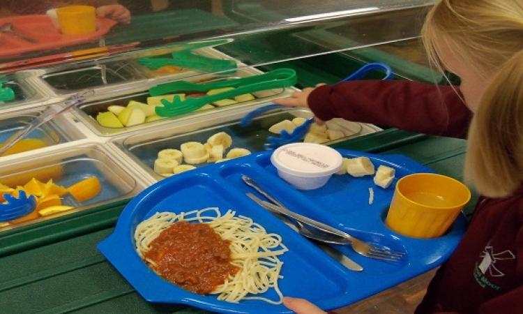 بالصور.. أشهر 10 وجبة مدرسية على مستوى العالم