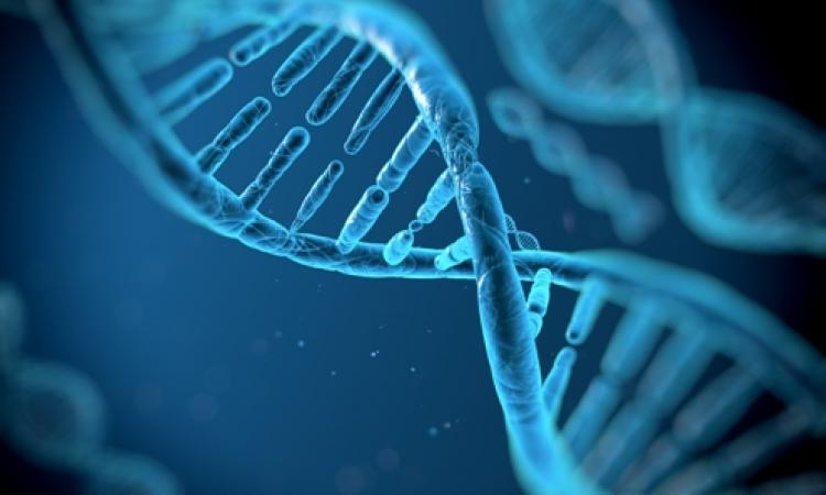 اقتراح بتحليل الحمض النووى لمليون شخص فى أمريكا