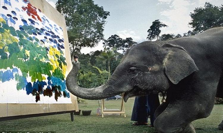 صدق أو لا تصدق .. أفيال ترسم لوحات فنية !!