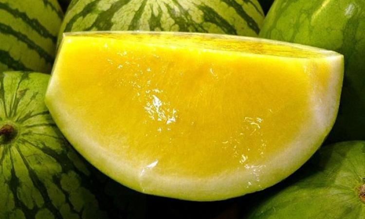 ما لا تعرفه عن فوائد البطيخ الأصفر