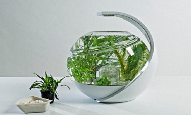 حوض سمك ذكي لا يحتاج إلى تنظيف أو تغيير مياهه