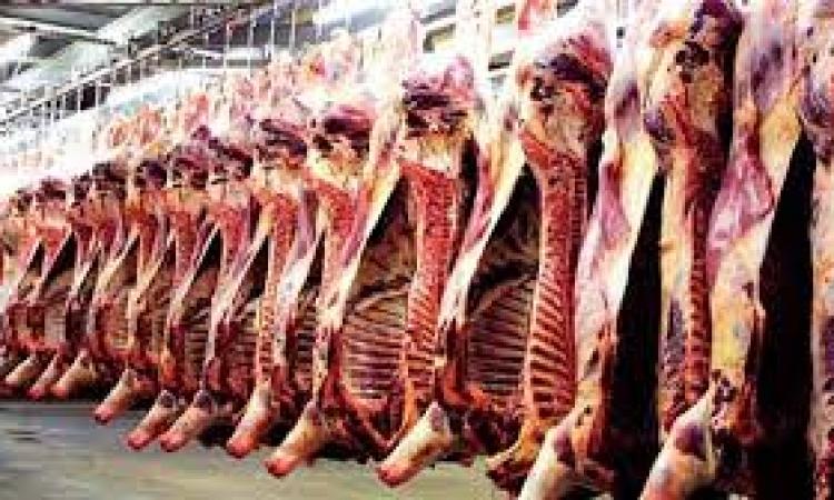 """كيف يمر """"عيد الأضحي"""" بدون أزمات في اللحوم؟"""