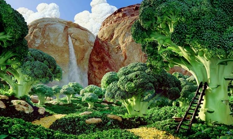 بالصور .. عوالم كاملة ومناظر طبيعية من الاطعمة والمأكولات