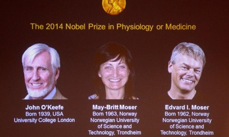 الإعلان عن الفائزين بأولى جوائز نوبل لهذا العام 2014