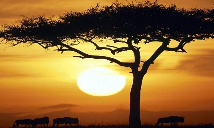بالصور.. تعرف على جمال الطبيعة فى أفريقيا