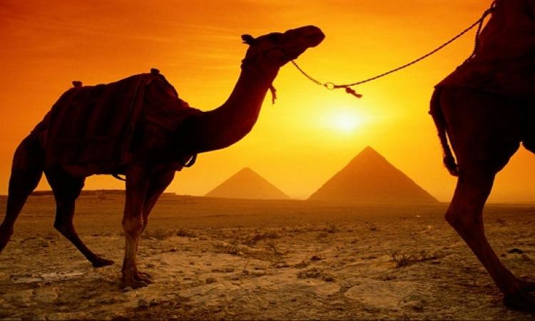 وزارة السياحة : عرض أوبرا عايدة بالأهرامات منتصف ديسمبر