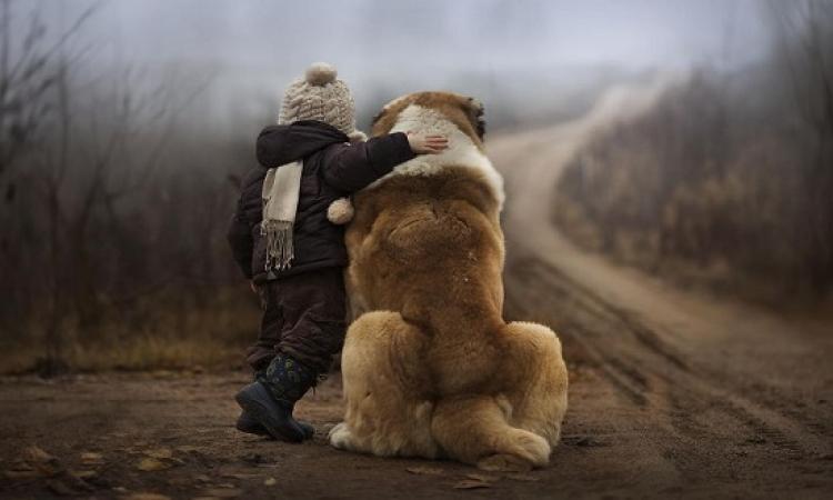 5 نصائح للوقاية من الأمراض المعدية بين الإنسان والحيوان