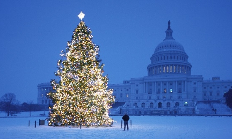 """""""لكل  شيخ طريقة"""" .. شاهد اجمل واروع التصميمات لشجرة عيد الميلاد"""