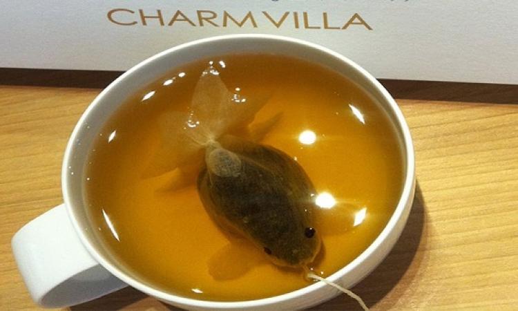 لغز السمكة الذهبية التى تسبح في أكواب الشاي في تايوان ؟