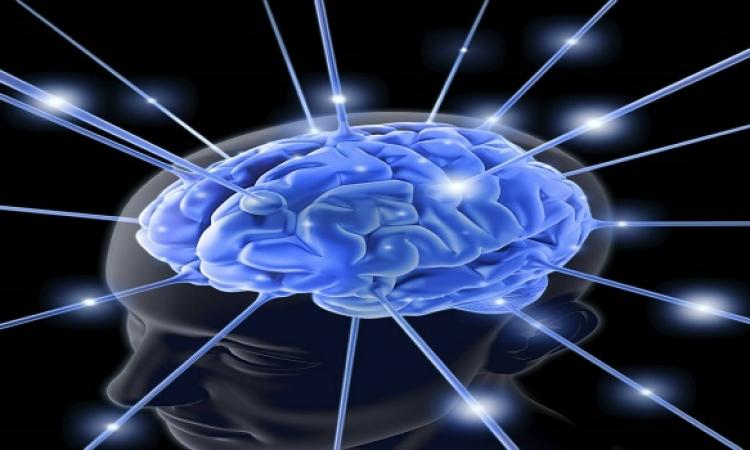 اخيرًا.. هيقدرو يستوعبوها  .. طريقة جديدة لفهم نشاط الدماغ