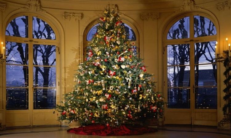 العثور على خاتم من الألماس بشجرة لعيد الميلاد