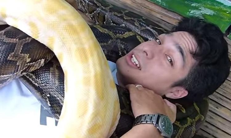 بالفيديو .. احدث صيحات التدليك .. مساج الثعابين .. تحب تجرب ؟!!