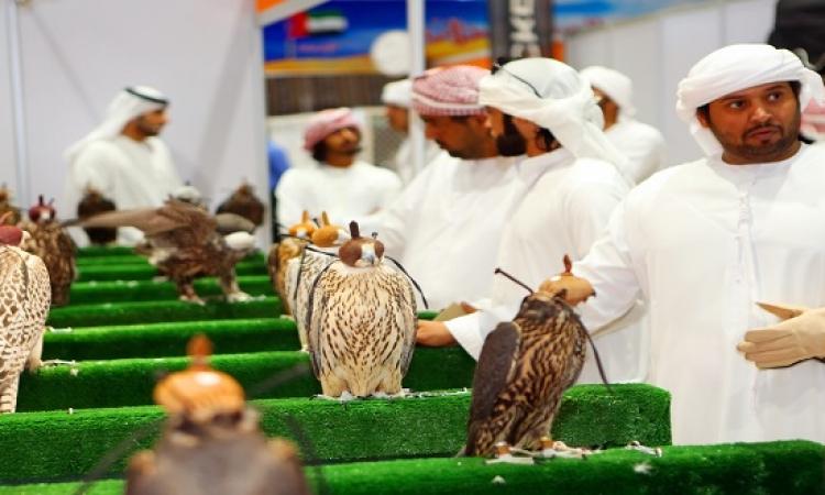 أبو ظبى تُطلق أكبر مهرجان للصقور فى العالم بمشاركة 82 دولة