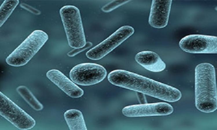 مضاد حيوى يحارب الجراثيم المضادة للأدوية