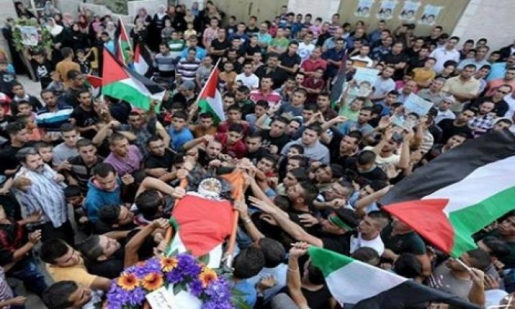 فلسطين تحارب الاحتلال بالاضراب العام