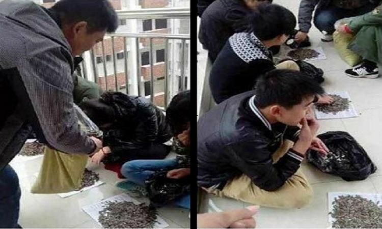 فى مدارس الصين .. العقاب يحلى مع قزقزة اللب