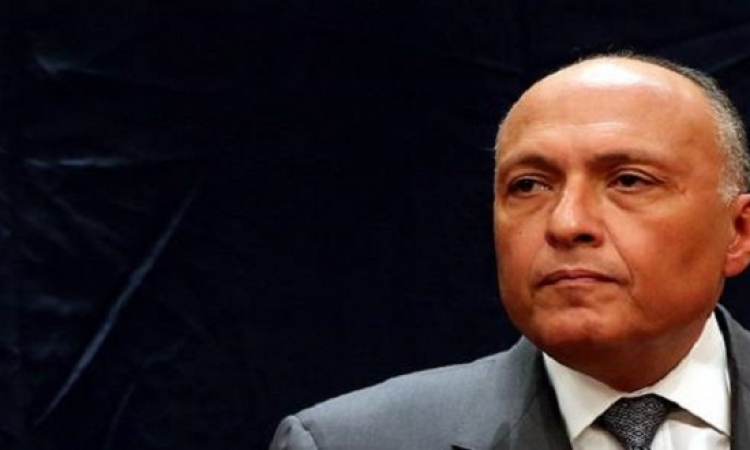 شكرى: توافق مصرى كويتى لمكافحة الإرهاب