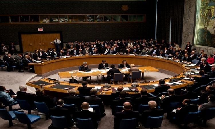 مصر تفوز بعضوية غير دائمة فى مجلس الأمن لعامين مقبلين بأغلبية الأصوات