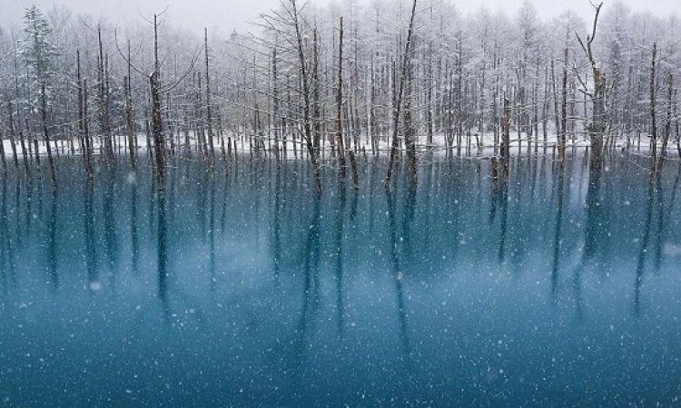 """بالصور.. لقطات من غابات بحيرة """"هوكايدو"""" الثلجية على مدار العام"""