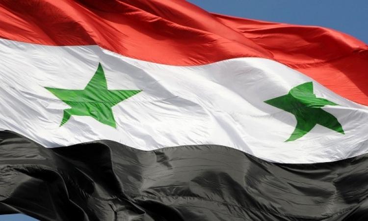 خارجية سوريا : لسنا بحاجة إلى قوات برية لمحاربة داعش
