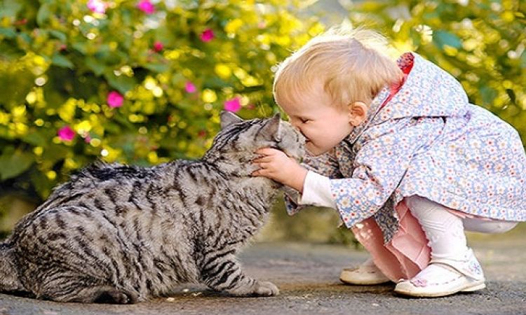 بالصور .. علاقة مذهلة بين الاطفال والقطط .. تقولش اخوات يا ربى !!