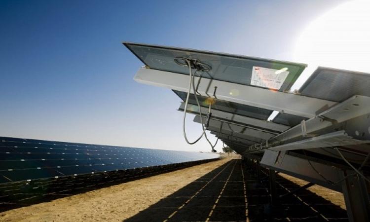 بالفيديو .. افتتاح محطة شعب الإمارات للطاقة الشمسية في منطقة سيوة