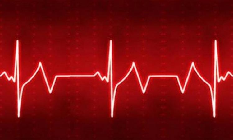 قلب يتحدى الحياة .. ينبض بعض نصف ساعة من نزعه من الجسد