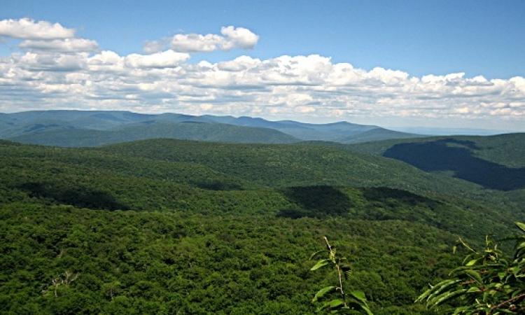 مرتفعات كاتسكيل الأمريكية .. نظرة بانورامية ساحرة