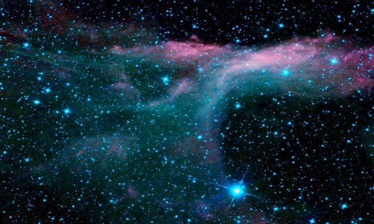 بالفيديو .. النجوم طلع ليها صوت