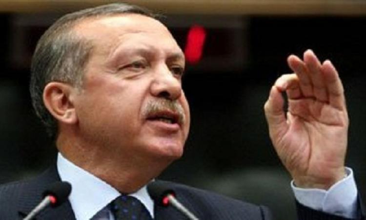 """تغريم أردوغان 10 آلاف ليرة لوصفه عملاً فنيا بـ""""البشع"""""""