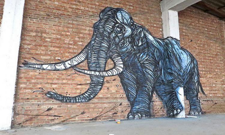 بالصور .. الرسم على الجدران يعيد الحياة للشوارع