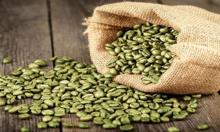 القهوة الخضراء قبل تناول الطعام يومياً تحرق الدهون
