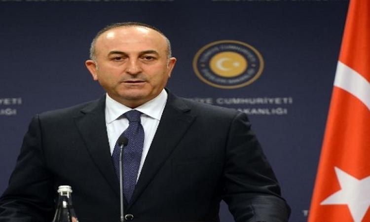 وزير خارجية تركيا : اتفقنا مع أمريكا على تقديم دعم للمعارضة السورية
