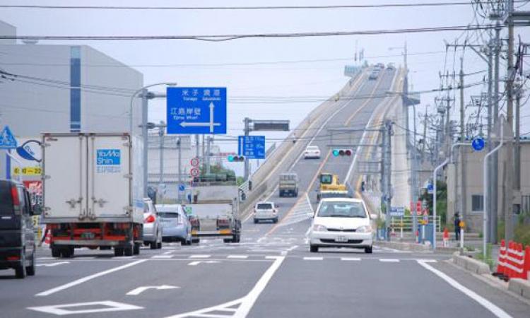 هل شاهدت من قبل أذكى جسر فى العالم؟
