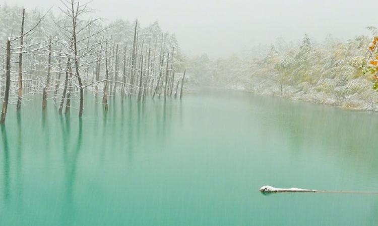 جمال الطبيعة فى هوكايدو اليابانية