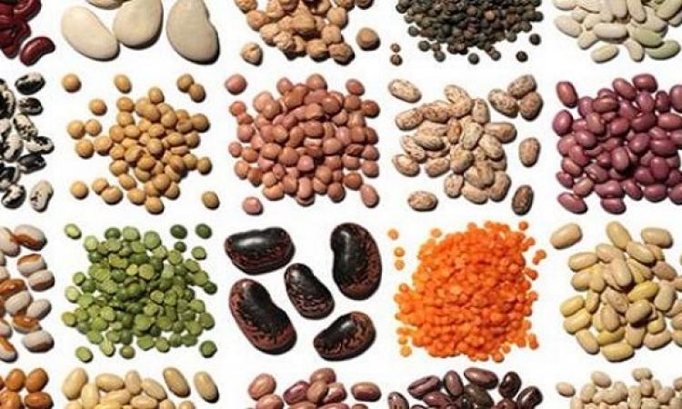تعرفى على أنواع مختلفة من الطعام تحسن من صحة شعرك